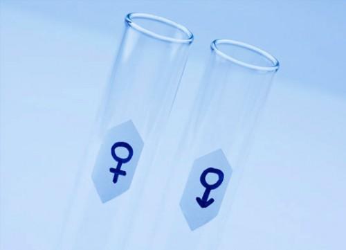 Fertility Treatments Donor Sperm